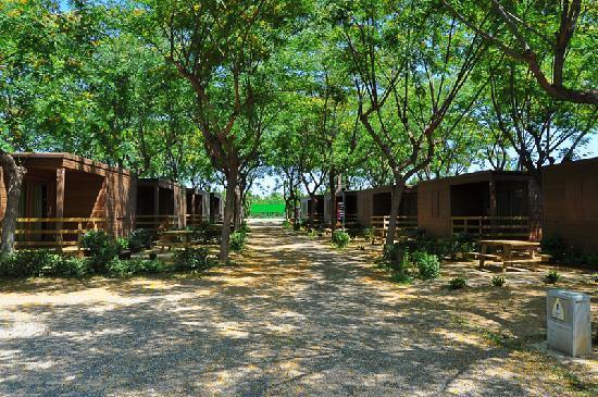 Camping Bungalows Amfora d'Arcs: Zona Bungalows Cambrils
