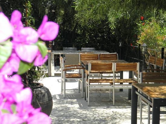 Fresh Restaurant : Garden