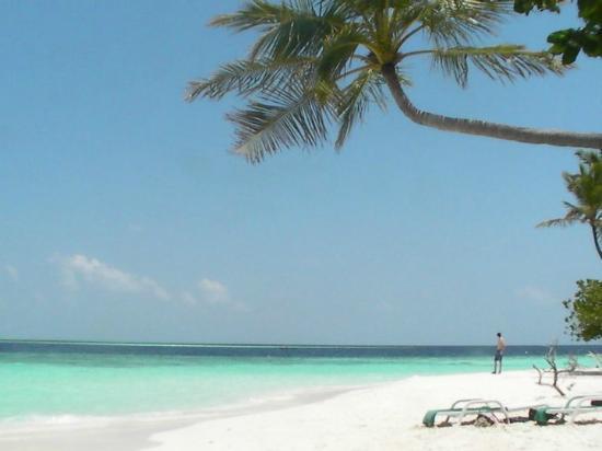 Biyadhoo Island Resort: panorama da cartolina