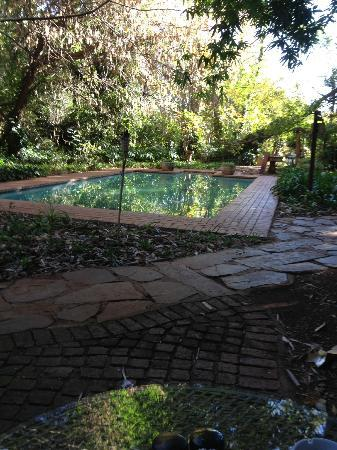 Foxwood House: Duck pool