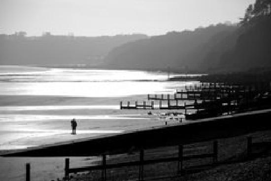 The Pirate Restaurant: View of Amroth Beach