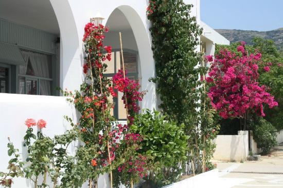 Karanasos: Hotel entrance