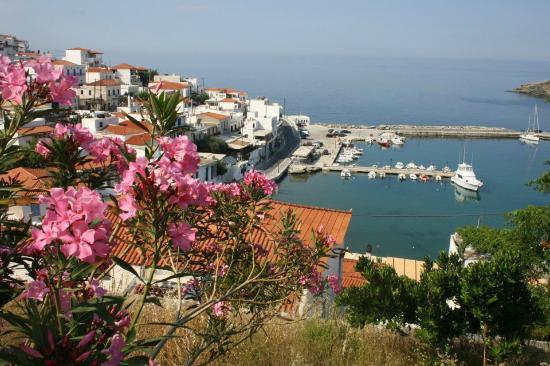 Karanasos: View of Batsi
