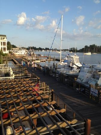 Buzz's Roost: beautiful view from rooftop