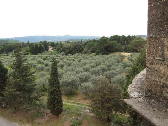 Chateau de Lourmarin: 城からの眺め