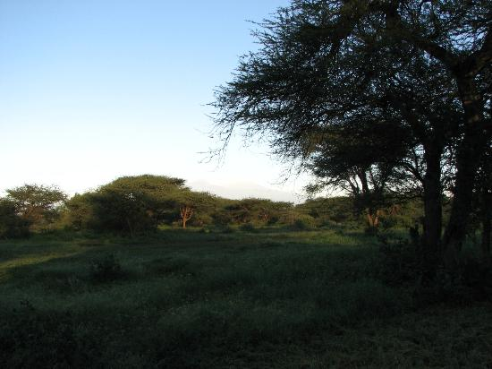 Severin Safari Camp: view from dining area
