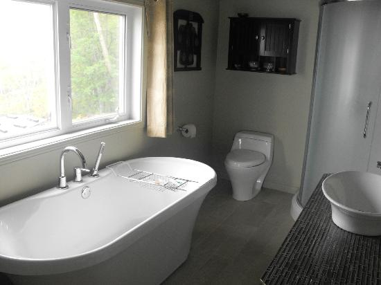 Auberge des Eaux Vives: Salle de bain chambre Brunante