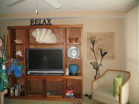 El Cantil Condo Resort: the tv and dvd the kids liked - I never watched it - why would you