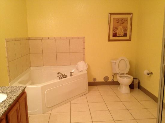Mountain View Condos at Pigeon Forge: Bathroom