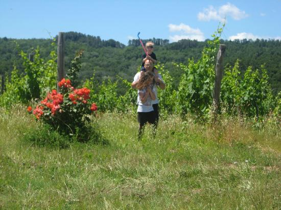 Casa Bini: vineyard, with my boy