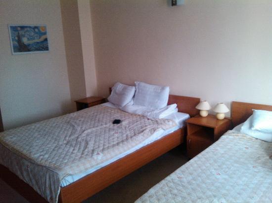 Hotel Ferihegy: Extremly hard beds