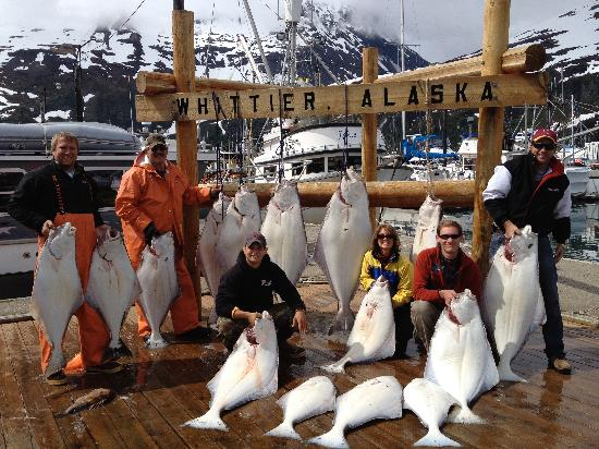 saltwater excursions fishing charters and heli tours