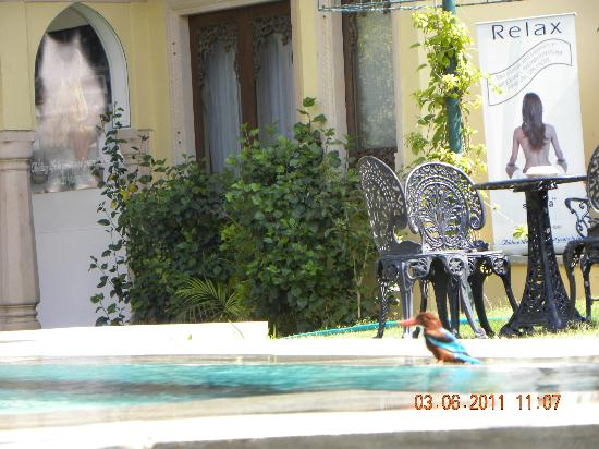 Narain Niwas Palace: spa