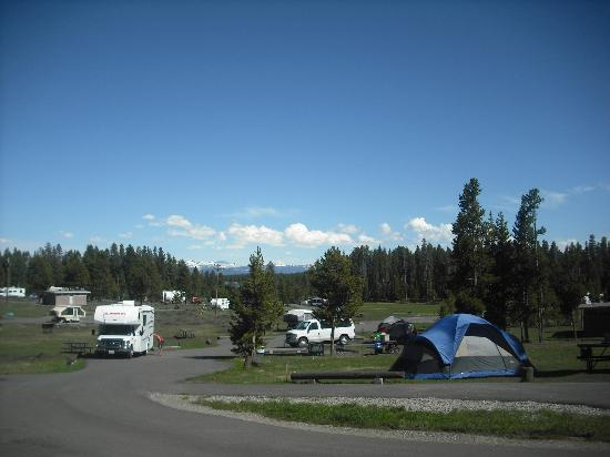 Bridge Bay Campground: View of campground