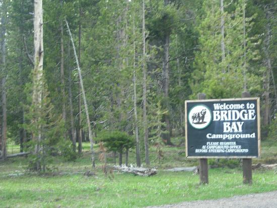 Bridge Bay Campground: Sign