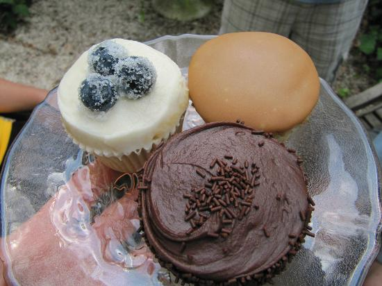 Sugar Bakeshop: Vanilla with blueberry, chocolate/chocolate, and caramel