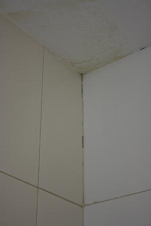 Reino de Granada Hotel : Parede casa banho