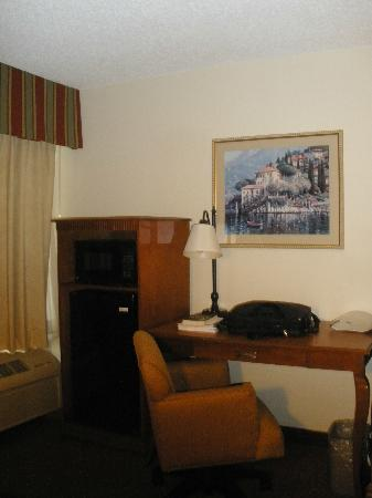 Hampton Inn Austin/Airport Area South: Room