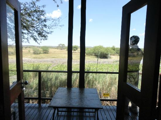Tau Game Lodge: View from inside our cottage looking out onto patio / watering hole