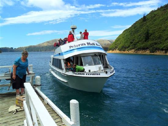 Pelorus Mail Boat: Weekly grocery & mail delivery