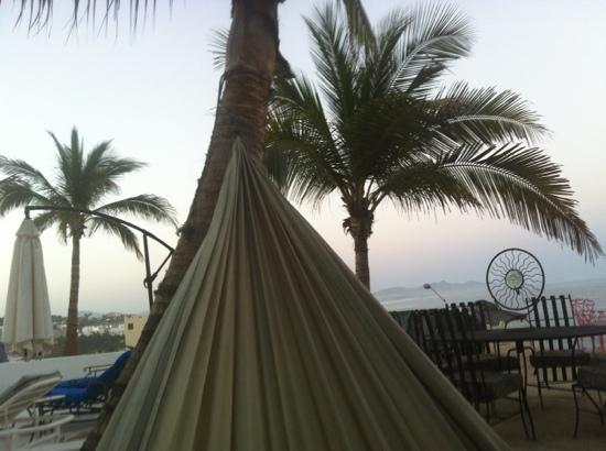 SurfinCabo B&B: relax in the hammock overlooking surfing hotspots