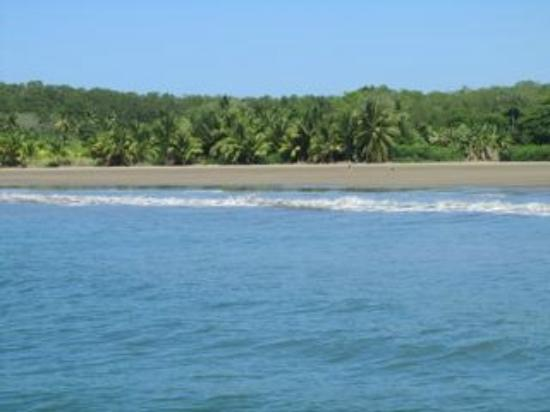 La Cusinga Eco Lodge: beach