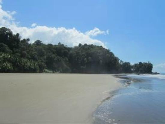 La Cusinga Eco Lodge: Cusinga's beach down the trail