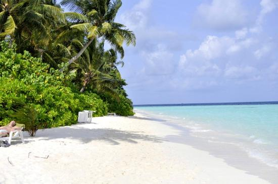 Biyadhoo Island Resort : Beach 4