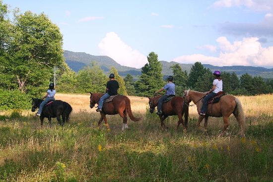 Adirondack Equine Center: Horse Trail in Lake Placid