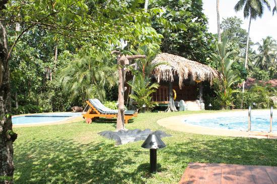 Dalmanuta Gardens - Ayurvedic Resort & Restaurant: Lovely pool area