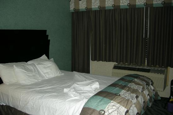 Concorde Inn Rochester Hills : The dimly lit room was musty and the carpet had stains.