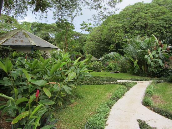 Coral Quays Fish & Dive Resort: the resort gardens