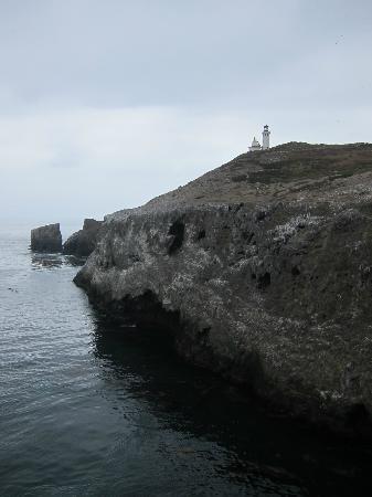 Anacapa Island: Scenic lighthouse on cliff island