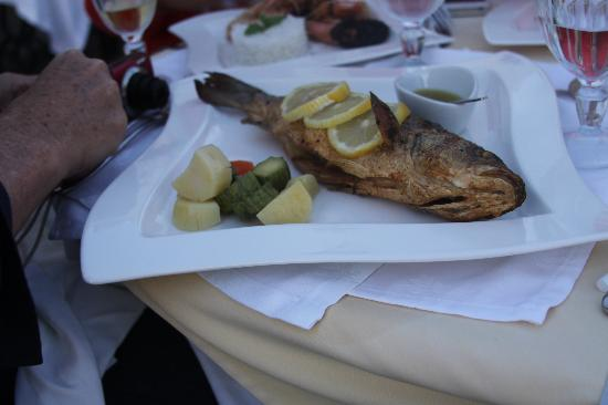 Fanari Villas: Delicious Fish