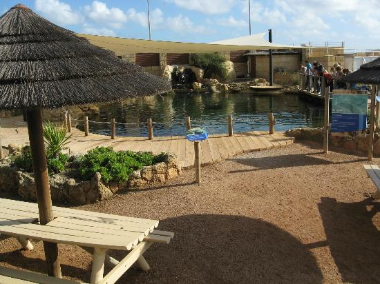 AQWA: Stingray Bay