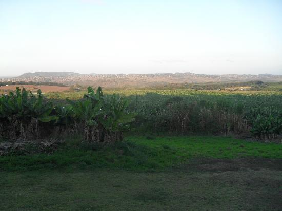 Nabana Lodge: View from lodge