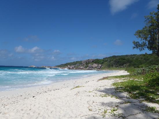 Grand Anse: plage deserte