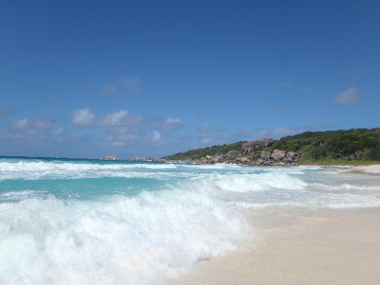 Grand Anse: ecume