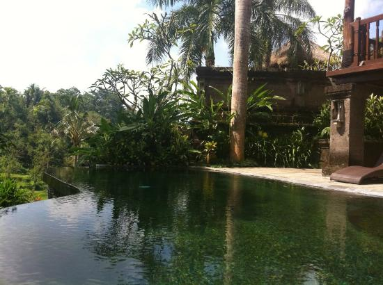 The Payogan Villa Resort & Spa: Our Villa