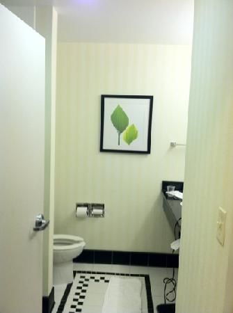 Fairfield Inn & Suites Washington, DC/New York Avenue: bathroom