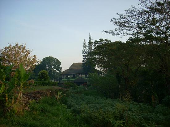 Poeri Devata Resort Hotel: ホテル前