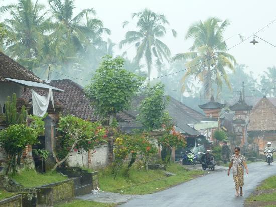 Villa Awang Awang: Melayang village