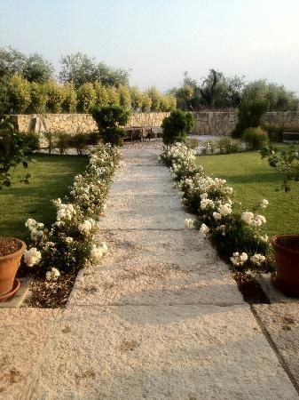 Delser Manor House Hotel: Garden