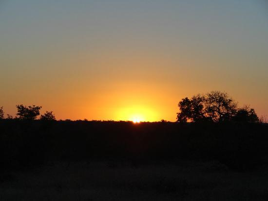 Shindzela Tented Safari Camp: Timbavati Sunset