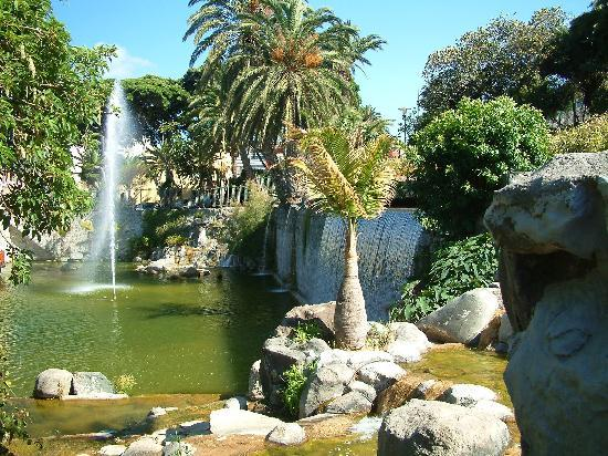 Las Palmas, Spagna: the Koi pond