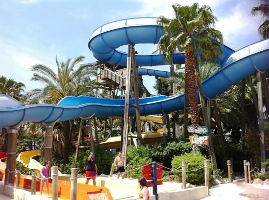 PortAventura Aquatic Park: a15