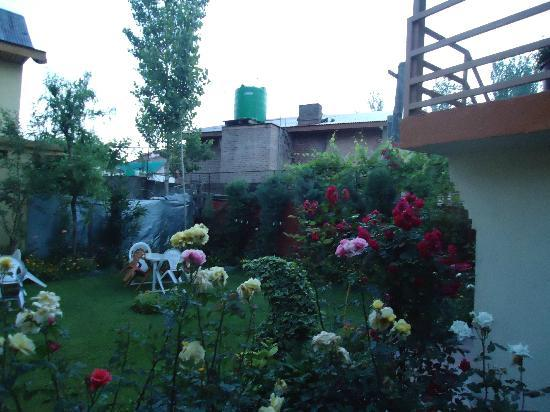 Hotel JH Bazaz (Happy Cottage): The beautiful garden early in the morning