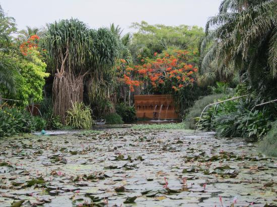 Anantara Hua Hin Resort : Lagoon Bereich Seerosenteich