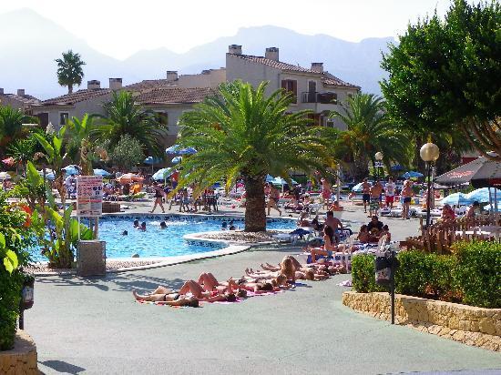 Albir Garden Resort: Piscina - Pool