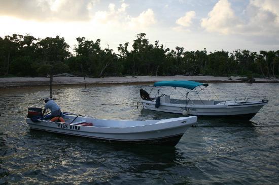 Oceanic Society Field Station: Boats